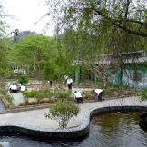 山莊花園整理