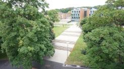 活動地點:Sussex 大學
